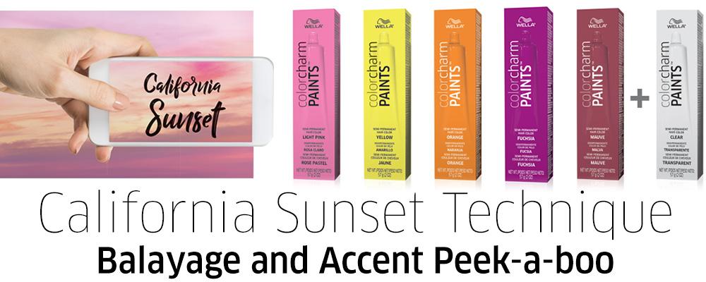 Wella Paints - California Sunset Technique
