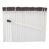 Fanta Sea Disposable Lip Brushes, 25 Pack
