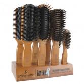 Spornette Bolero Wood Hair Brush, 8 Piece Display