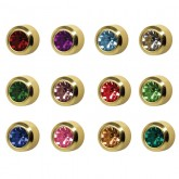 Studex Gold Plated Bezel Set Birthstone Earrings
